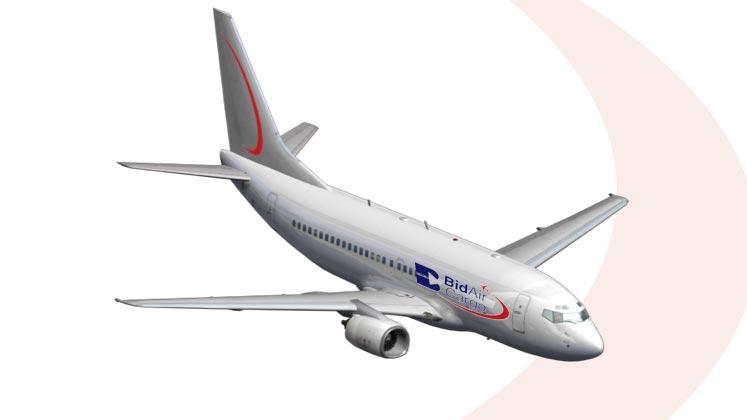 APEX Boeing 737 -300 SF Specifications.jpg